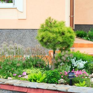 Einen vorgarten richtig anlegen garten for Garten richtig gestalten